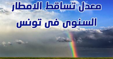 معدل تساقط الامطار السنوى فى تونس