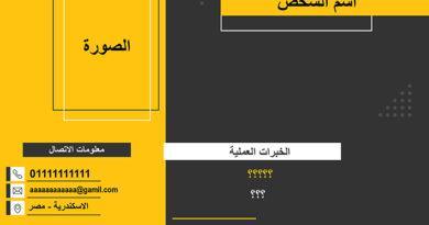 تحميل CV جاهزة 2021 PDF وبكل الامتدادات عربى وانجليزى